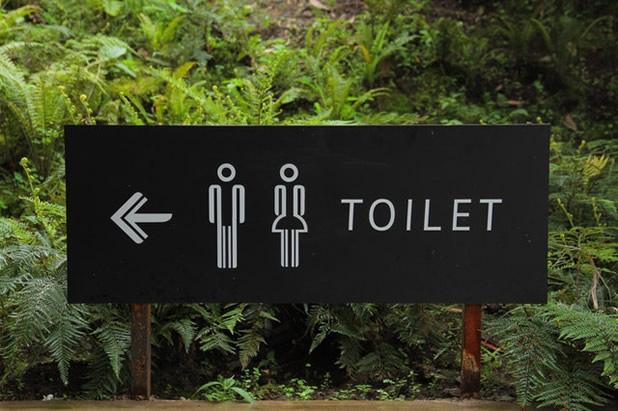 トイレにもAIが!?急病人や忘れ物などの早期発見に